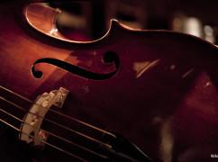 contrabbasso-lincoln-orchestra_1249